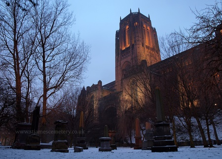 Gardens and Liverpool Cathedral, 2013
